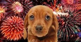 fogos de artificio 23-2-217